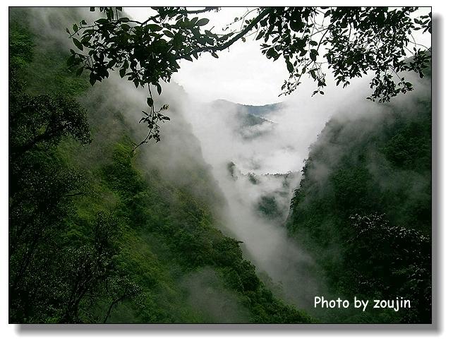西藏林芝风景图片 - 大峡谷